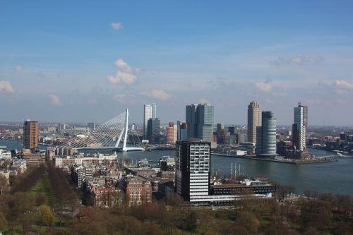 rotterdam euromast erasmus bridge