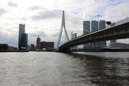 rotterdam  erasmus bridge  new mesh