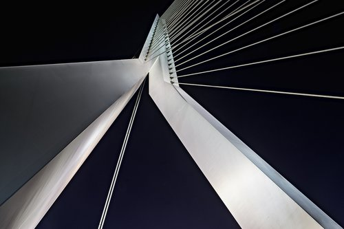 rotterdam  erasmus bridge  city