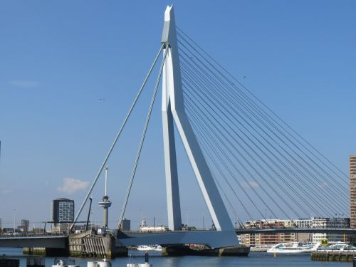 rotterdam metropolis erasmus bridge