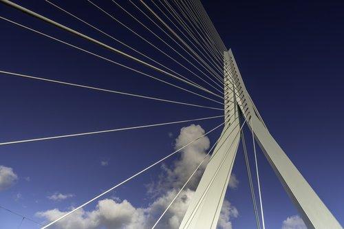 rotterdam  erasmus bridge  netherlands