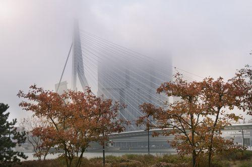 rotterdam fog erasmus bridge