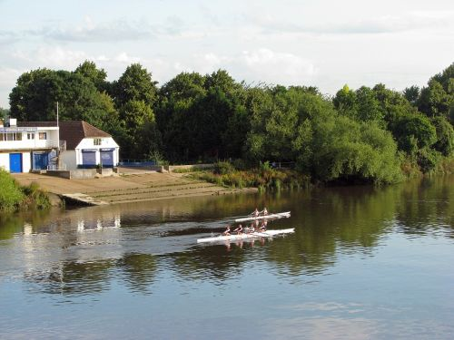 rowing river thames river