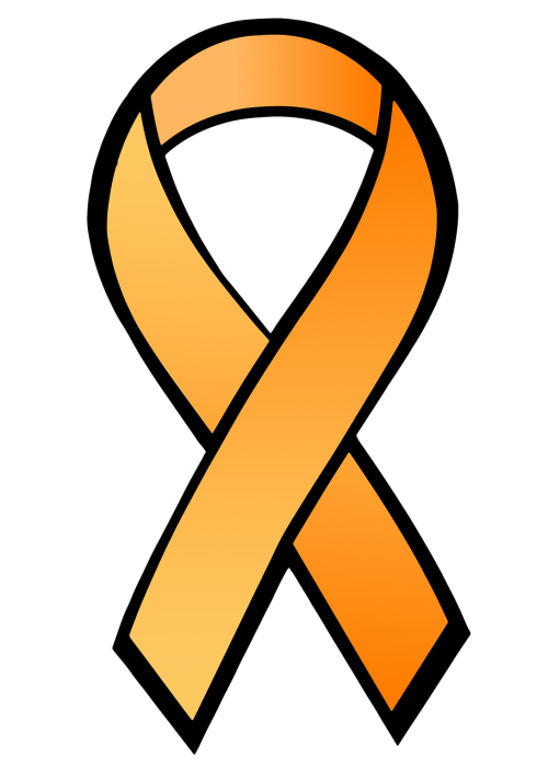 ribbon satin orange ribbon