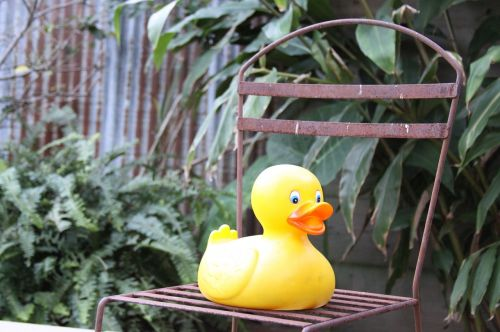 rubber duck chair iron