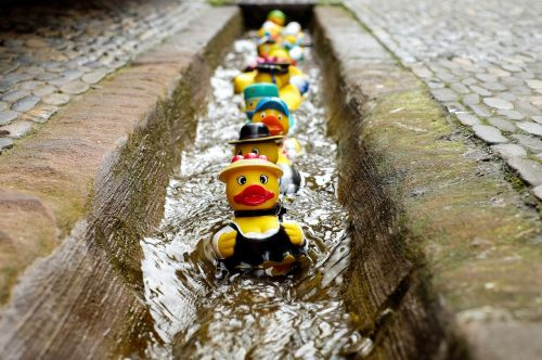 rubber duck bath duck toys