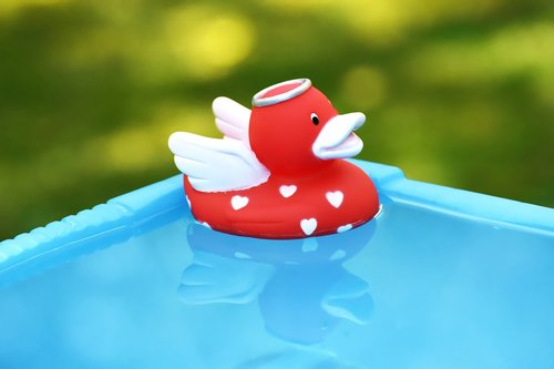 rubber duck  angel  quietscheente
