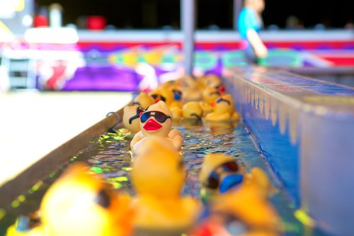 rubber duck  game  amusement