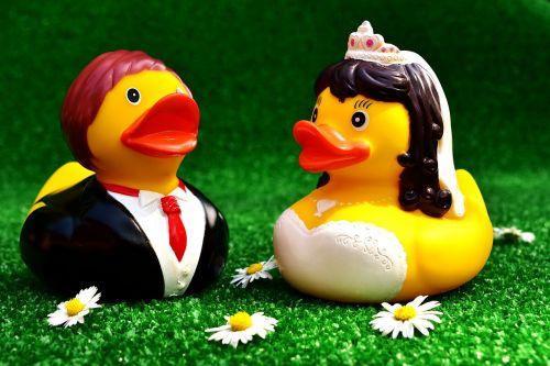 rubber ducks wedding bride and groom