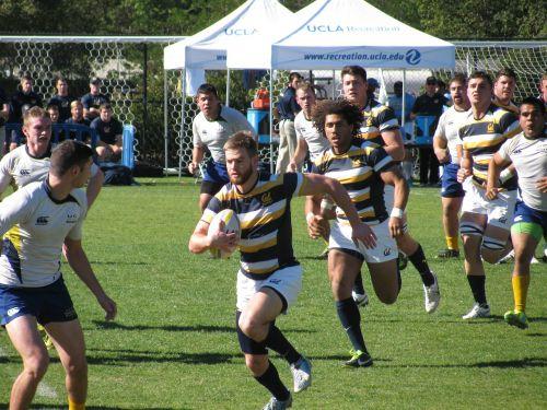 rugby cal berkeley