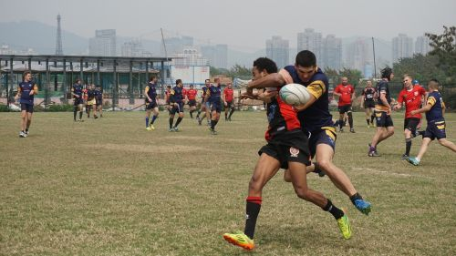 rugby sports men