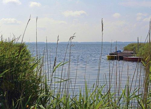 Rügen, Bodden, Vakarų Pusė, Bay, investuotojams, valtys, Reed, vandenys, dangus, pobūdį, jūra, žolė, Baltijos jūra, pakrantės, Hiddensee, MV, Pomeranijoje, sūrus vanduo