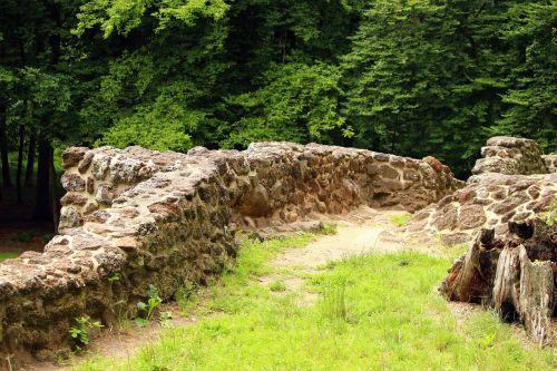 ruin wall rasenerz