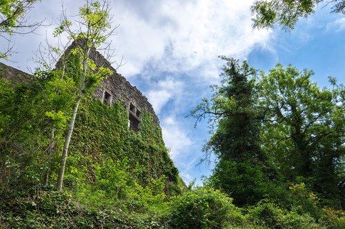 ruin  burgruine  masonry