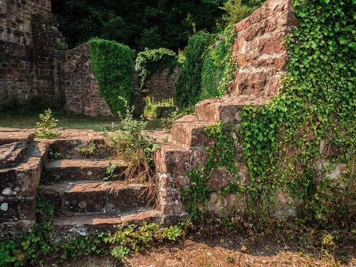 ruin  burgruine  castle wall