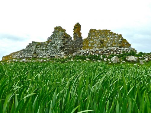 ruins grass ruin