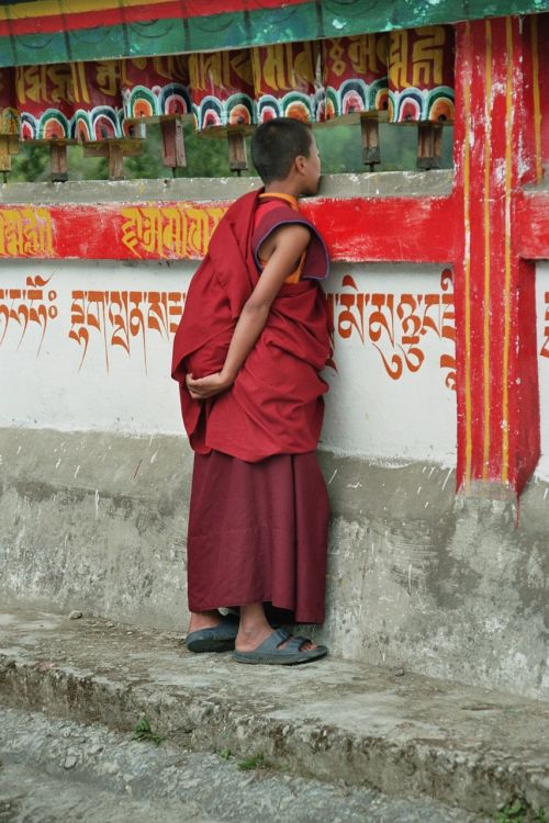 rumtek buddhist monk