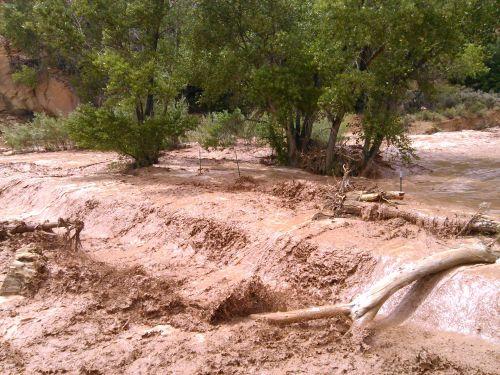 potvynis, vanduo, srautas, upė, gamta, upelis, veikia upė