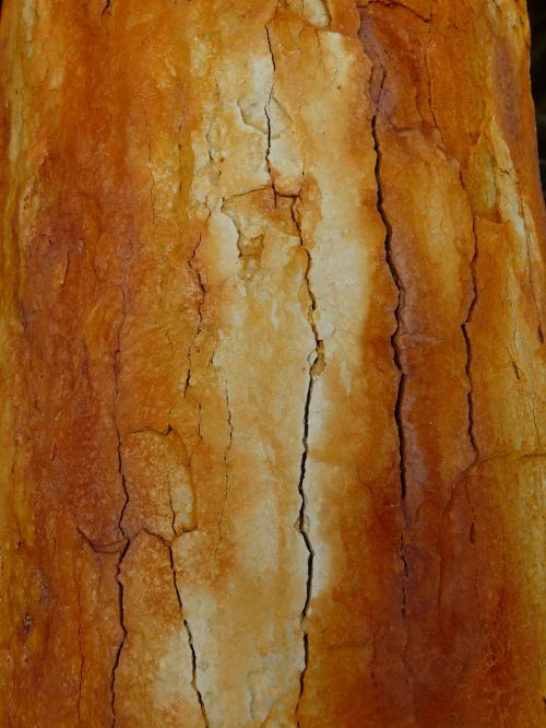 rusted crack stainless