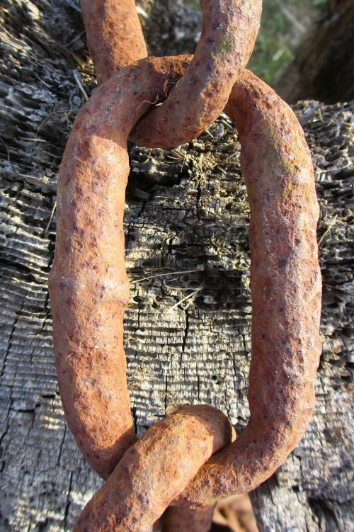 rusted chain link iron