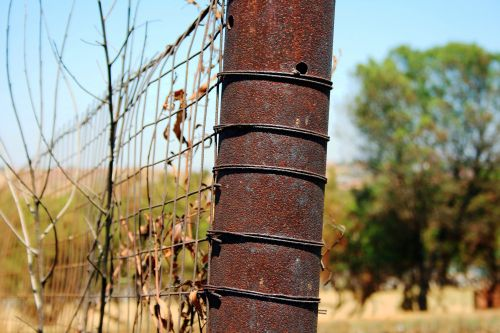 Rusted Fence Post