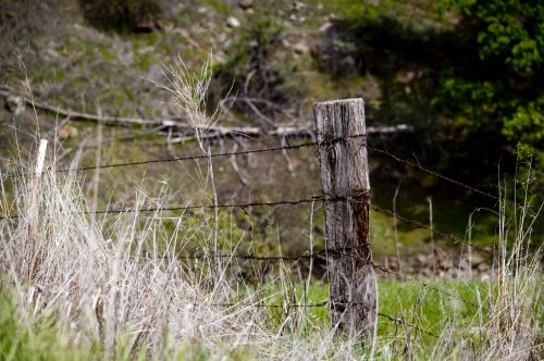 Rusty Barbed Wire Fence