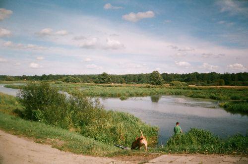 upė, medis, vasara, Lublin, Lenkija, upė prie lublino