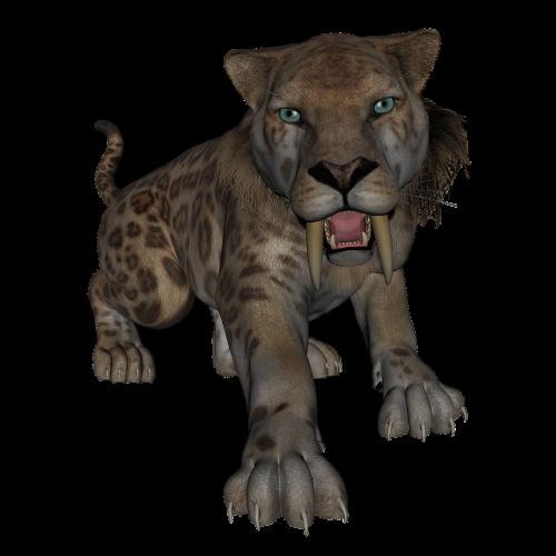 saber toothed tiger saber tooth tiger