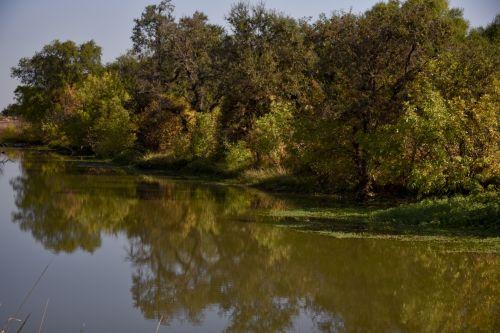 Sacramento Watershed