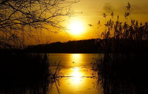 bokšto ežeras,karalius miške,Brandenburgo ežeras,potsdamas,saulėlydis,saulė,dusk,vakarinis dangus,twilight,gamta,ežeras,vakarinis kraštovaizdis,šviesa,abendstimmung,romantiškas,romantika