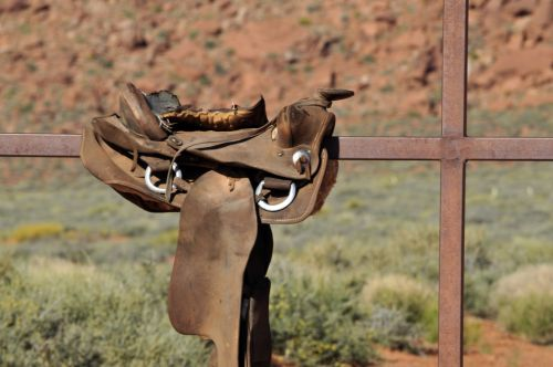 balnas, balneliai, arklys, arkliai, dykuma, Arizona, jodinėjimas, važiuoti, Jodinėjimas, žirgais, nardymas, arklys, balnas