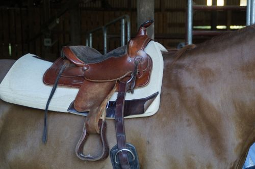 saddle western saddle saddled