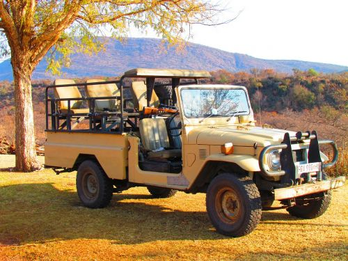 safari jeep vehicle