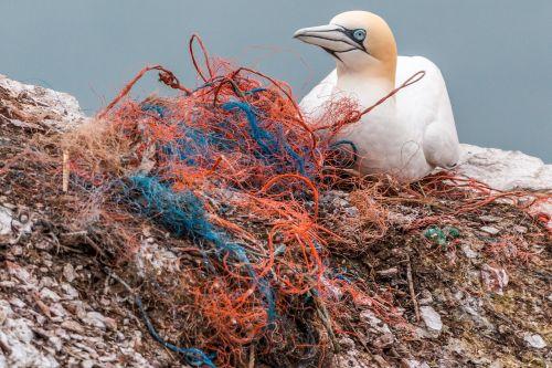 safety net spirit network plastic waste