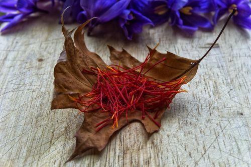 saffron spice pistils