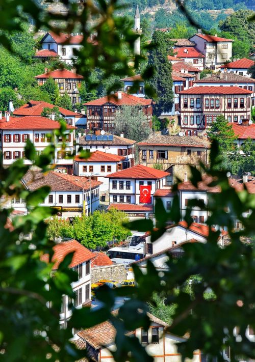 safranbolu turkey wood