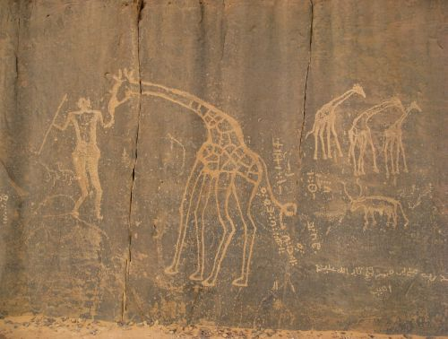sahara tassili cave paintings