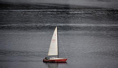 sail sailing boat sail boat