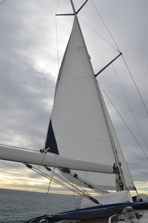 sail sea boat