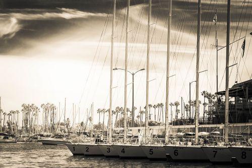 sail boat ocean bay