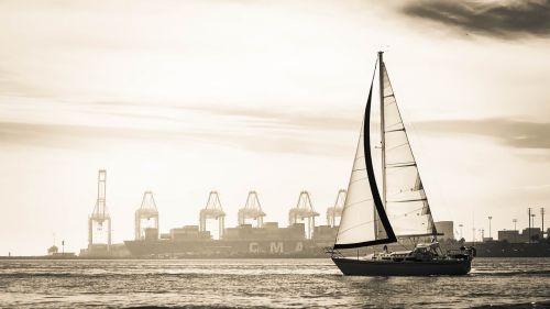 sail boat ocean black and hite
