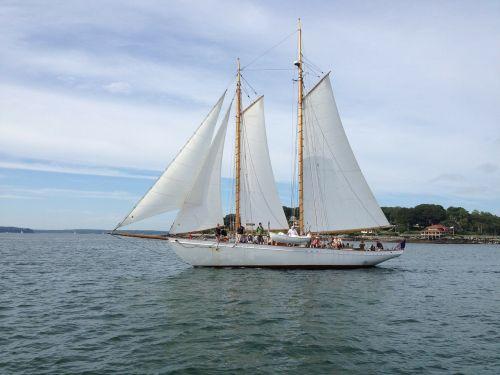 sail boat boat sailing