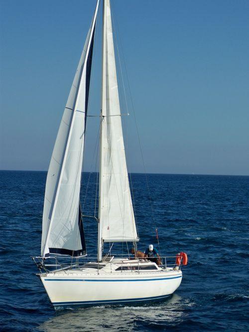 sailboat sail sailing