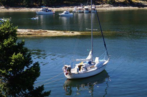 sailboat boat boating