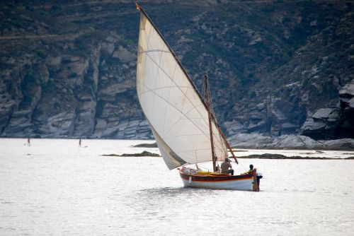 sailboat browse summer