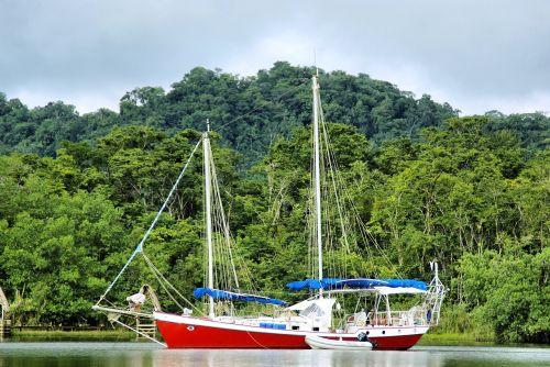 sailboat river rainforest