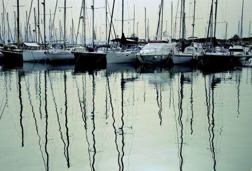 sailboats moored jetty