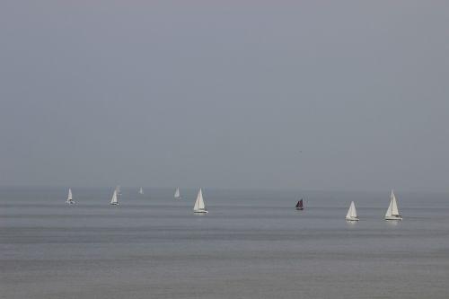 sailboats boats sea