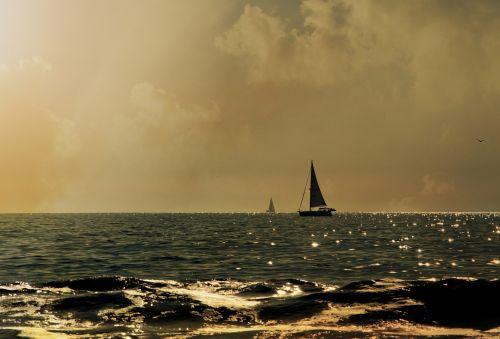 Sailboats In Golden Sunset