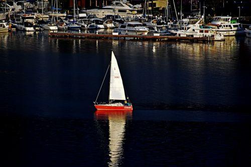sailing sailing boat sailor